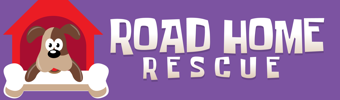 Road Home Rescue